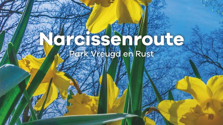 Narcissen route Park Vreugd en Rust